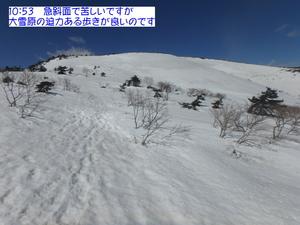 P3300031.JPG