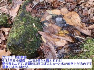 間欠泉.JPG