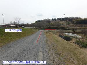 P4140056.JPG